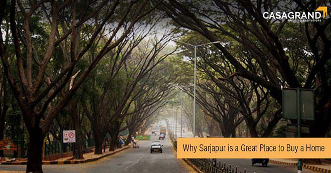 Why Sarjapur is a great place to buy a home