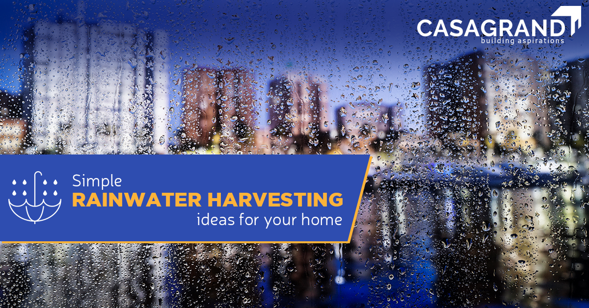 Simple rainwater harvesting ideas for your home.
