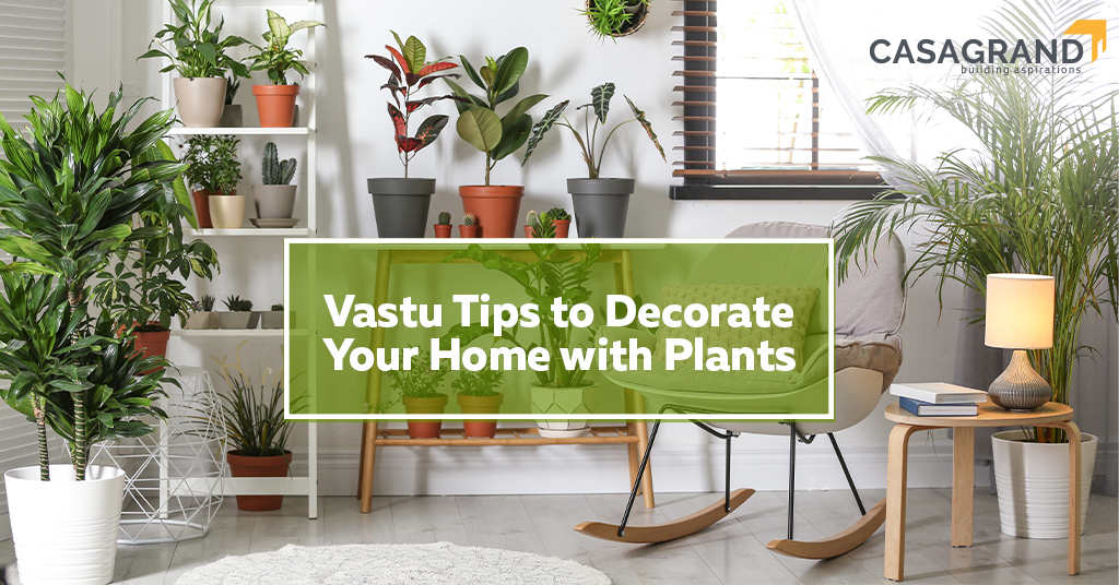 Vastu Tips to Decorate Your Home with Plants